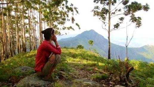 forest goddess 1